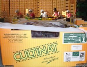 Culinat, la marca de Agronovel, la empresa familiar de José Antonio Rico