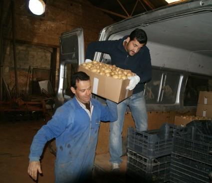 Quico entrega una caja de cebollas a Fermín.