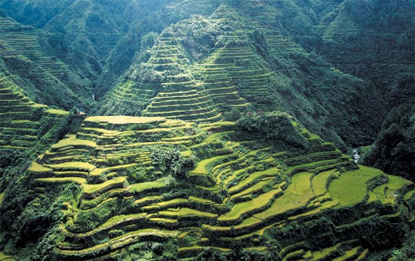 La Agricultura En La Historia De La Humanidad 02