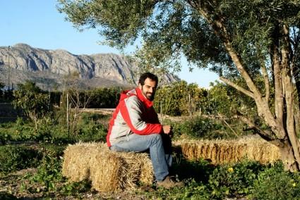 En la plantación de bosque mediterráneo