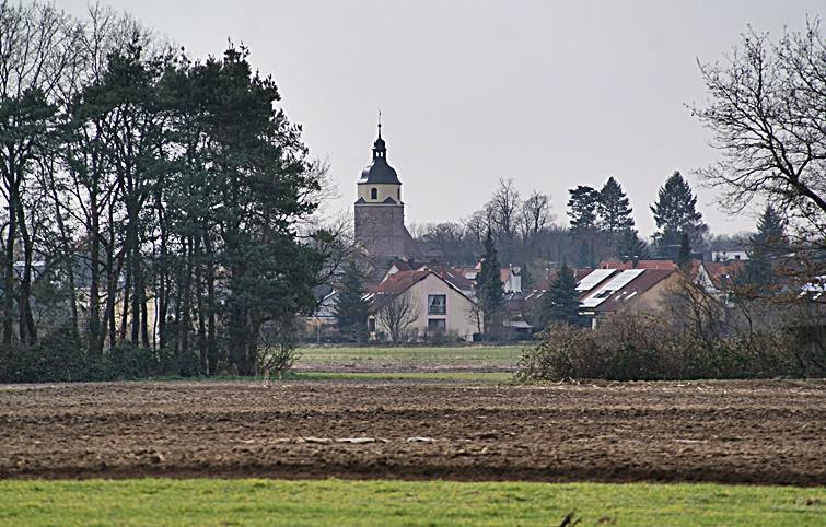 Foto del autor. Iglesia y campos de Reutles