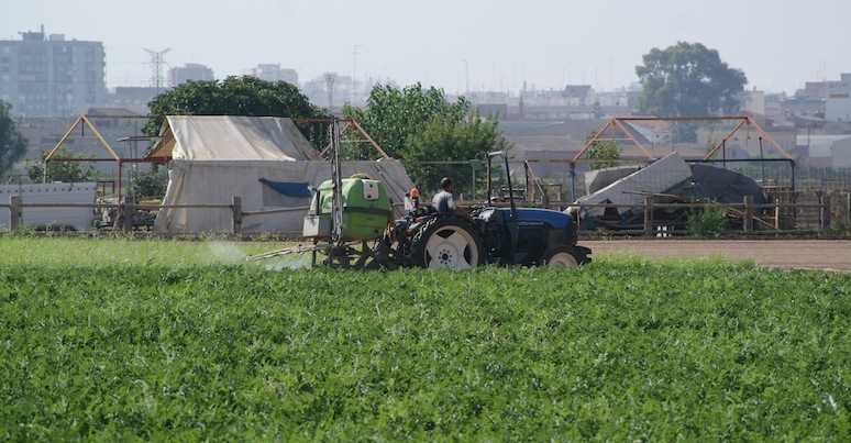 Un tractor cargado de plaguicida fumiga un campo de Borbotó, en la Huerta de Valencia. El perfume acre se expande a decenas de metros.