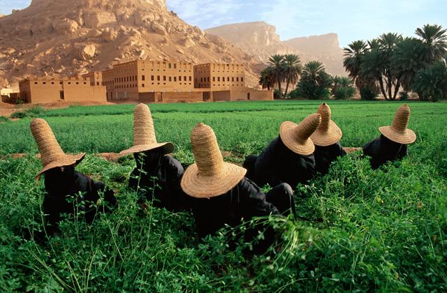 Un campo cultivado en Yemen. Tomado de la página http://www.datuopinion.com/reino-de-yemen