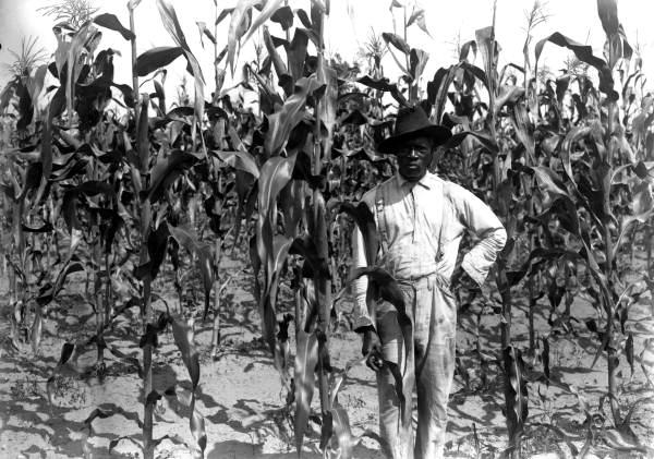 La Agricultura En La Historia De La Humanidad 05