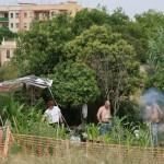 Pachi, el Chino y una amiga preparándose una paella en su huerto.