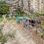 El mismo huerto, con los edificios de la calle Ramón Llull al fondo.