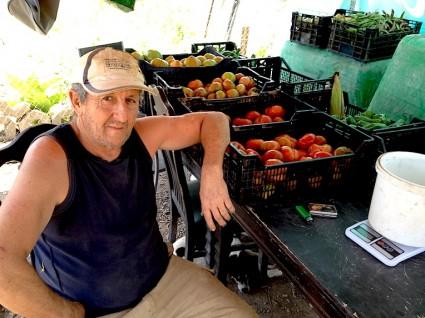Manuel, con su frutería a pie de caballón. No hay verduras más frescas.