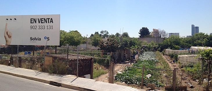 El solar de los huertos de Canterería, en Benimámet. Como puede verse, uno de los bancos propietarios es el Sabadell, interesado en quitarse de encima la verdura.