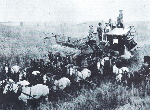 Segadora, rastrilladora tirada por caballos. Ilustración tomada de la página de