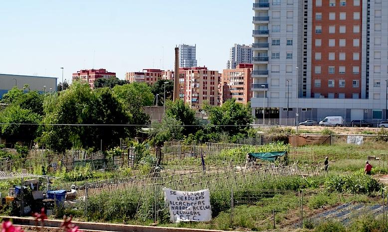 Los huertos del Empalme, en el término municipal de Burjassot. El anuncio de venta de verduras es el de Manolo.