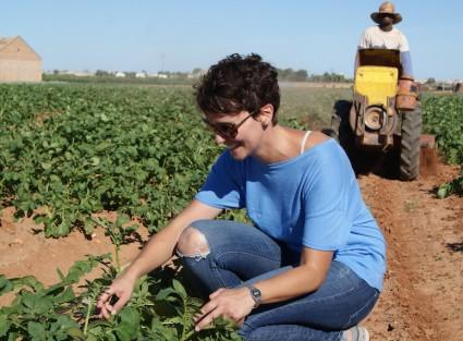 María, estudiante de agronomia, buscando orugas en un campo de patatas