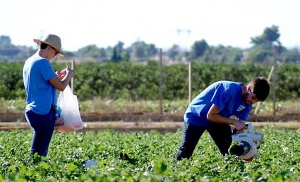 Una clase práctica y beneficiosa para el agricultor