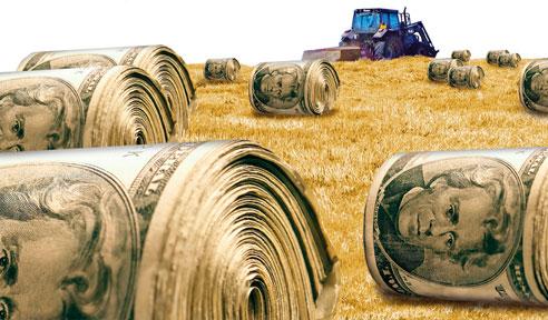 Subsidios. Tomada de isvamurti.com