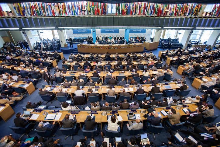 Fotografía tomada de la página de la ONU