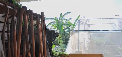 Aperos de labranza e invernadero en l'Hort de Carmen