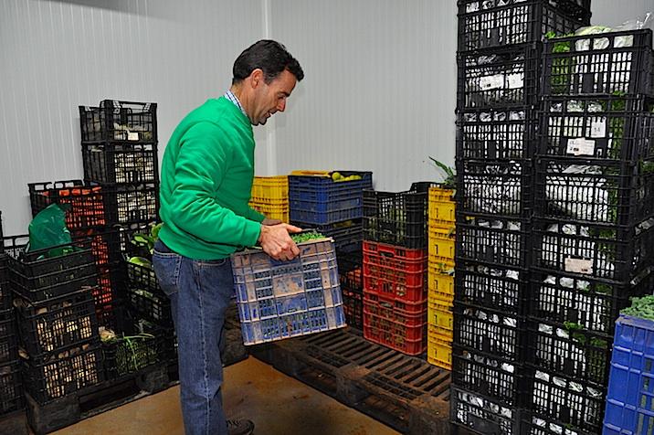 Fermín Salcedo en la cámara que vacía cada día los productos frescos que va almacenando desde primera hora, una vez limpios.
