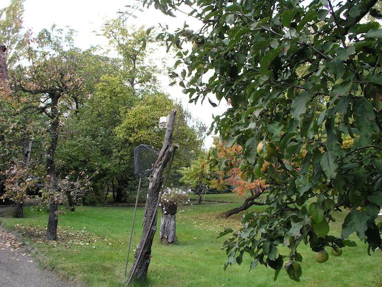 Jardín de la casa de la familia Renau en Ehrlichstrasse. En él pasó parte de la noche Teresa, fulminada por la espada flamígera de su padre.