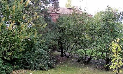 La casa de Ehrlichstrasse, escenario de las filípicas de Renau a su familia.