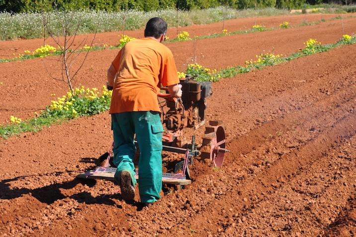 Juan, profesional de la tierra empleado por Agrolife, roturando un campo con una aplicación de invención propia.