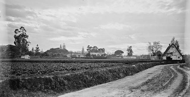 La Huerta de Valencia hacia 1900. Imagen tomada de El Argonauta Valenciano.