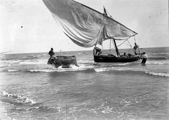 El ralismo de Sorolla en foto de la época. Foto Martín Vidal Romero