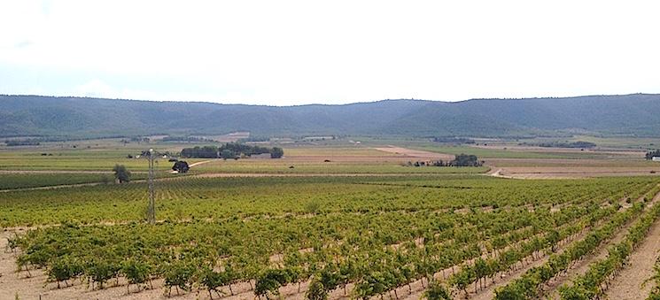Fontanars se halla en un corto valle que va de Onteniente a La Encina. Es una zona de producción de excelente uva debido a su templado microclima.