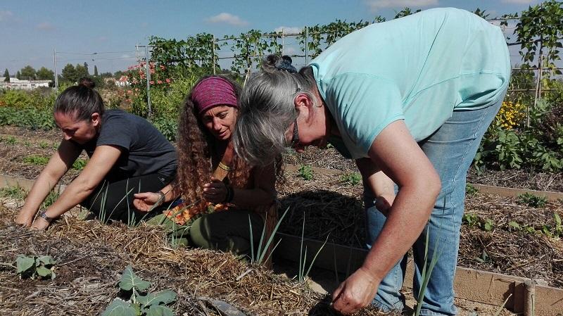 Curso de permacjltura en La Huerta del Boticario