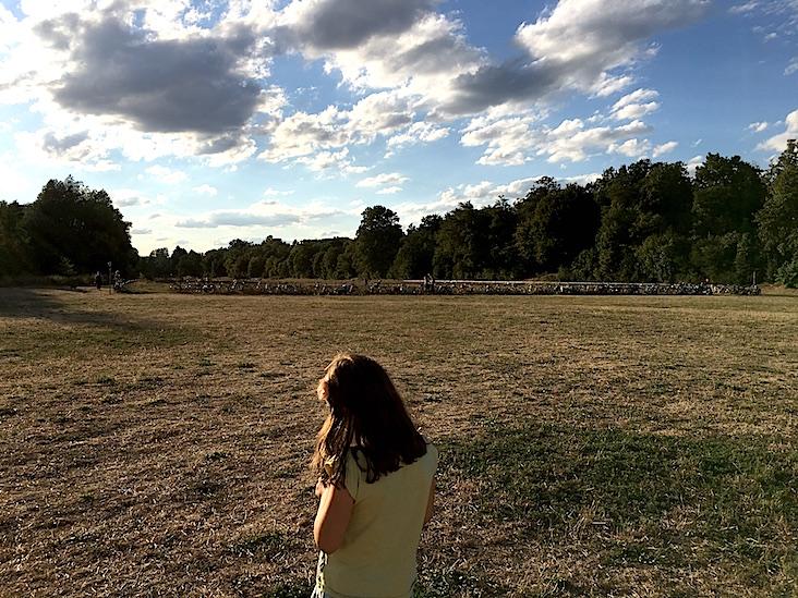 Un prado en las orillas del río Pignitz, en Nuremberg. Las áreas de los parques que no están protegidas por la sombra de los árboles, han quedado agostadas y mustias, merced al verano inclemente.