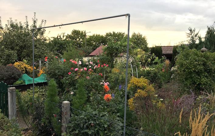 Un jardín urbano en Thon (Nuremberg). Pequeños paraísos de la clase media laboriosa, ajena a las inseguridades del Kapitalismus salvaje.