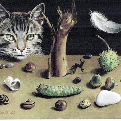 marta gatos y caracoles